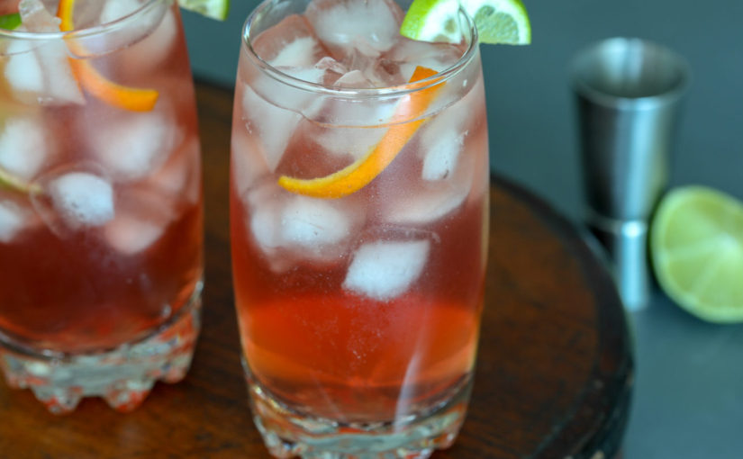 Low Carb Cranberry Vodka Spritz