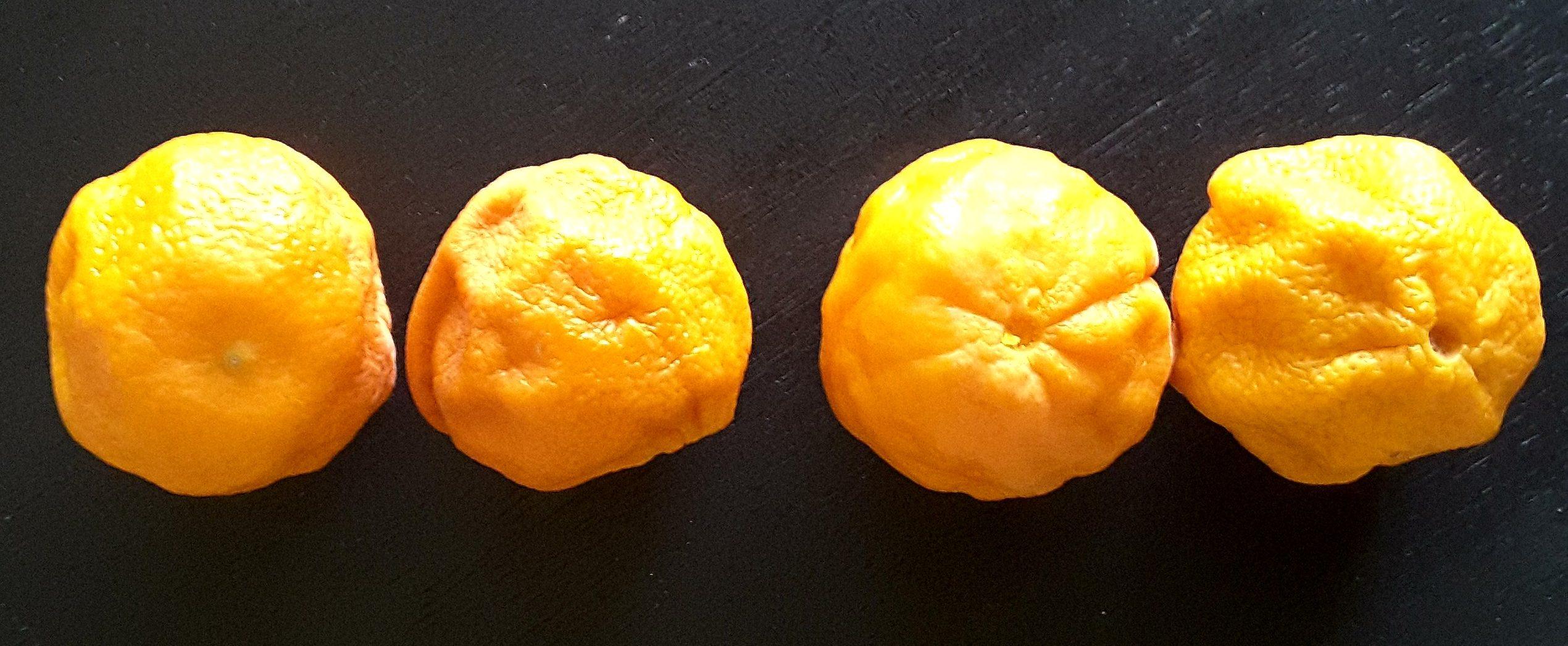 Low Sugar Mandarin Macadamia Cake