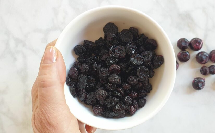 Sugar Free Dried Blueberries